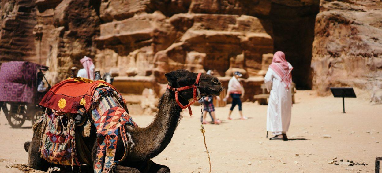 Travel Insurance Company | Al Wathba National Insurance Co.
